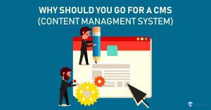 Why Should you go for a CMS (Content Managment System)